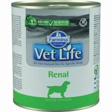 Влажный корм Farmina Vet Life Renal для собак с заболеваниями почек с курицей - 300 г х 6 шт