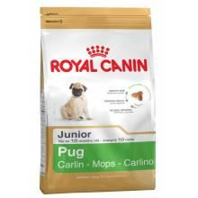 Royal Canin Pug Junior сухой корм для щенков породы Мопс 1,5 кг